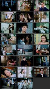 Amorseko: Damong Ligaw (2001)