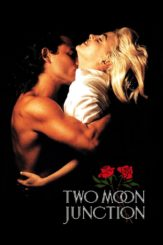 """Poster for the movie """"Two Moon Junction"""""""